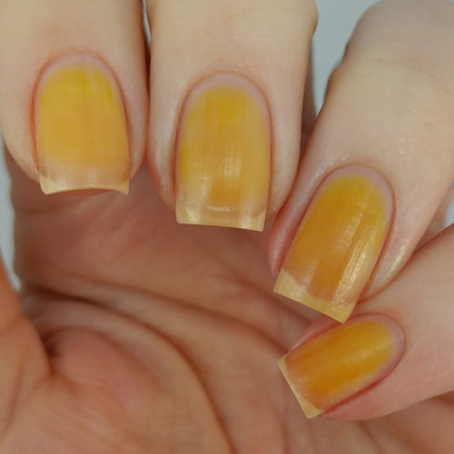 CHINA GLAZE SUMMER REIGN SWATCHES